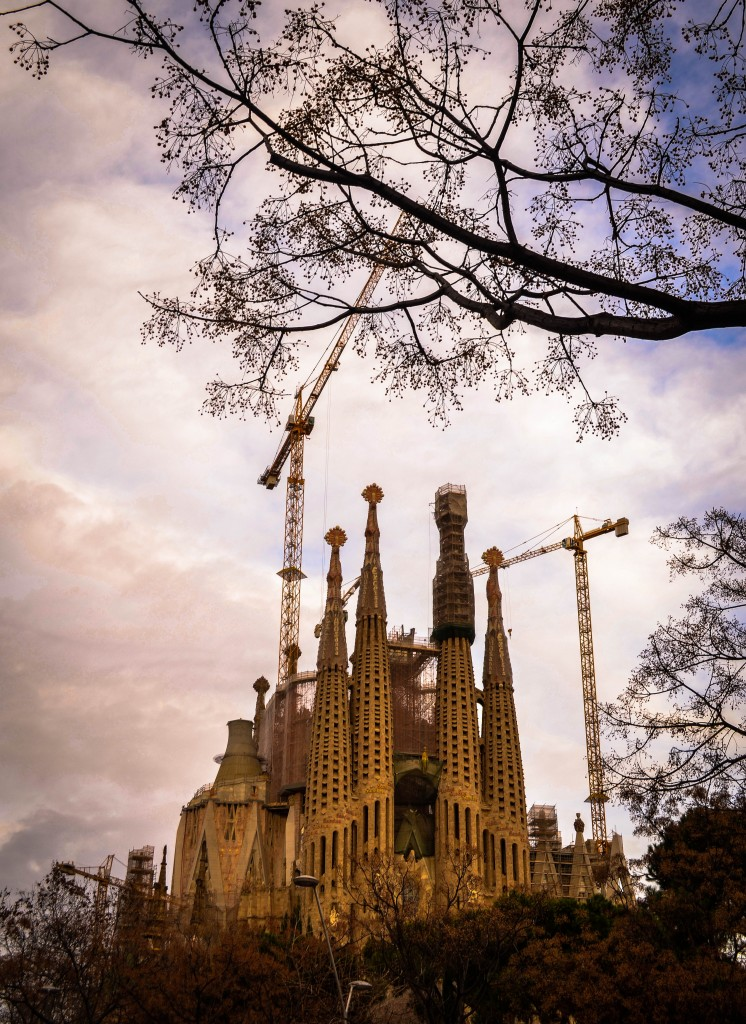 Sagrada Família amazing ceiling , confused dasher, ultimate guide to gaudy architecture in barcelona, barcelona 3 day itinerary, 10 best things to do in Barcelona, barcelona in winter