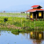 Finding Tranquility, Humor, Hope and Strength in Inle Lake